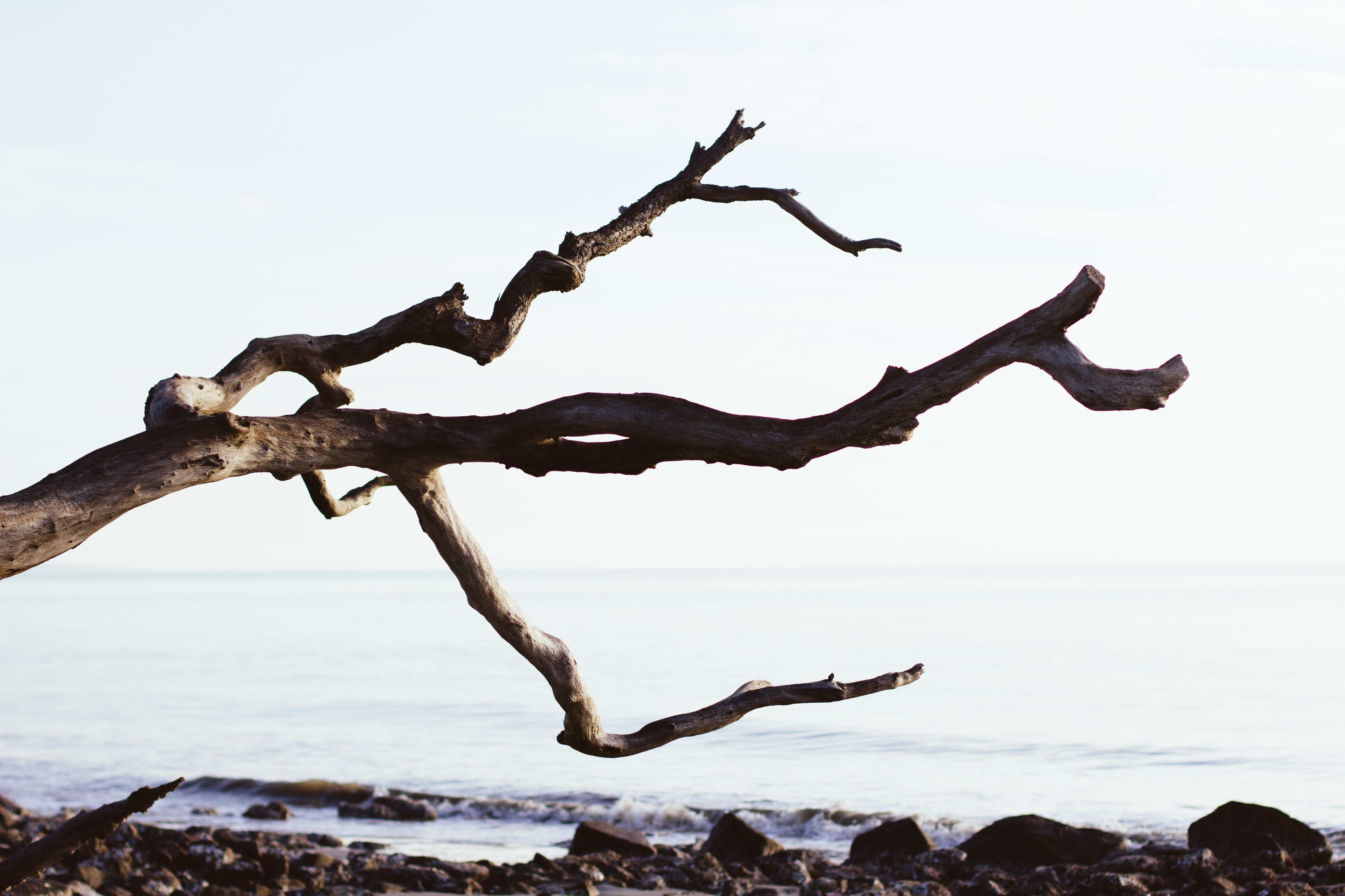 Git 정리 - 버전 관리 - Branch - 병합